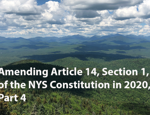 Debate over amendments to Article 14 in the NYS Constitution in 2020, Part 4: an overview of the issues entangled in a possible amendment for Cathead Mountain in southern Hamilton County