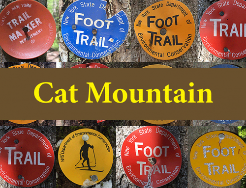 Cat Mountain is an easy going 3-mile hike in the mountains west of Lake George above Bolton Landing