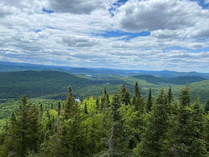 Coney Mountain, Franklin County, Adirondack Park