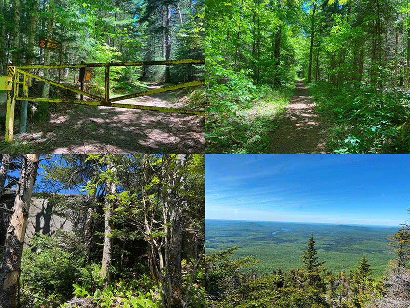 Hike Debar Mountain in the northern Adirondacks in Franklin County