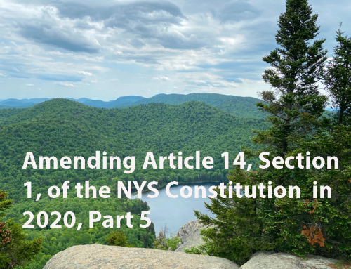 Debate over amendments to Article 14 in the NYS Constitution in 2020, Part 5: how New York's lead environmental agency acted as a private lobbyist for NYCO Minerals, Inc, to assist the mining company in an amendment to mine the Forest Preserve