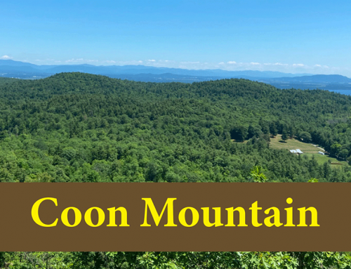 Hike Coon Mountain