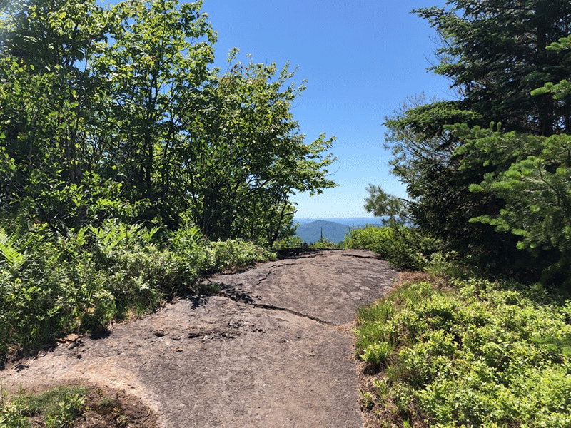 Hike St. Regis Mountain in the Adirondack Park