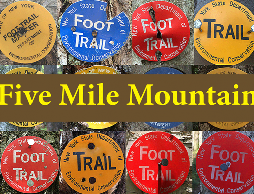 Hike Five Mile Mountain