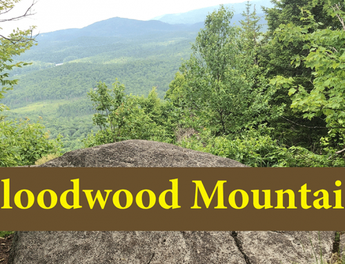 Hike Floodwood Mountain