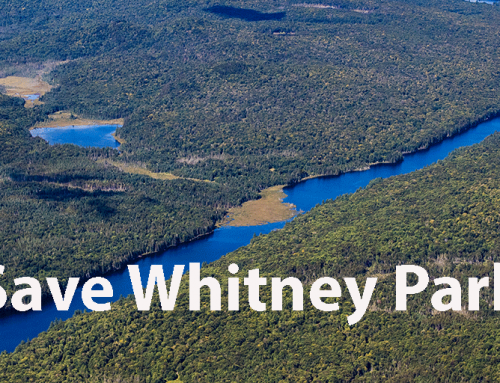 Sign Petition to Save Whitney Park