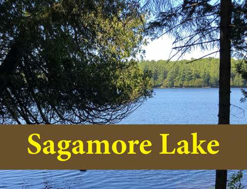 Hike Sagamore Lake Trail