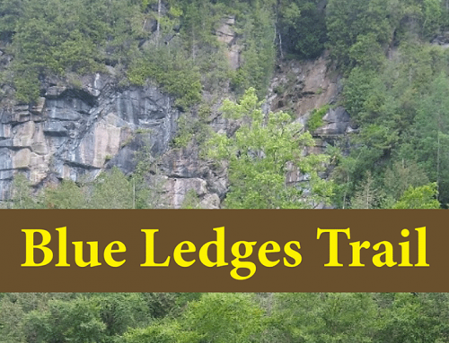Hike to Blue Ledges on the Hudson River