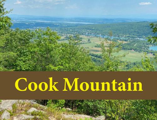 Cook Mountain