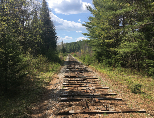 The new multi-use public recreation trail construction begins from Lake Placid to Tupper Lake