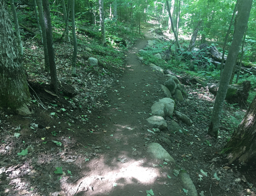 New model sustainable hiking trail on Mount Van Hoevenberg nears completion
