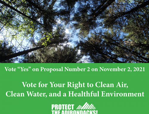 Vote for Ballot Proposal 2 for the Constitutional Amendment for the right to clean air, clean water, and a healthful environment